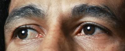 Les yeux - Page 15 12310