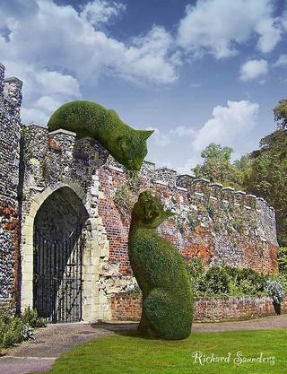 Sculpture végétal  - Page 2 Cd9db510