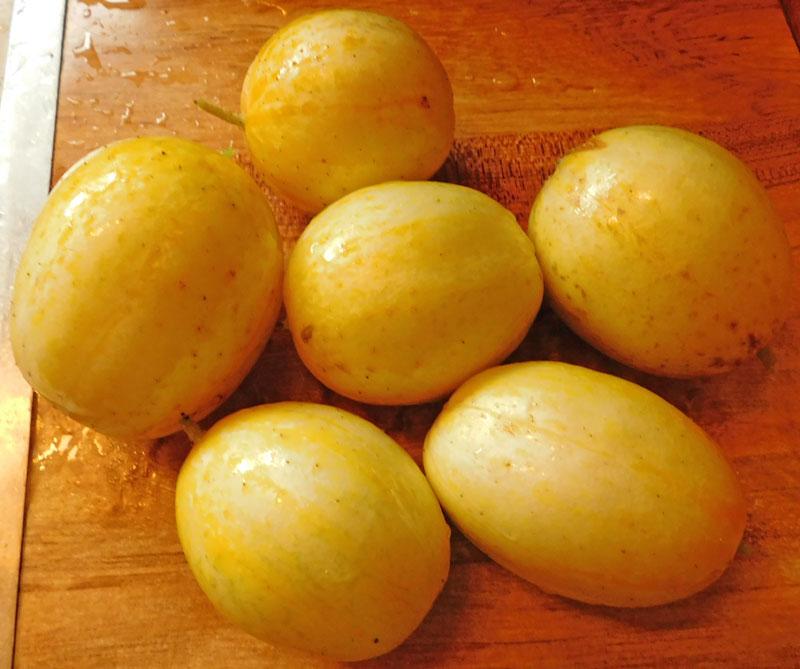 Today's Harvest - Page 8 Lemon-11