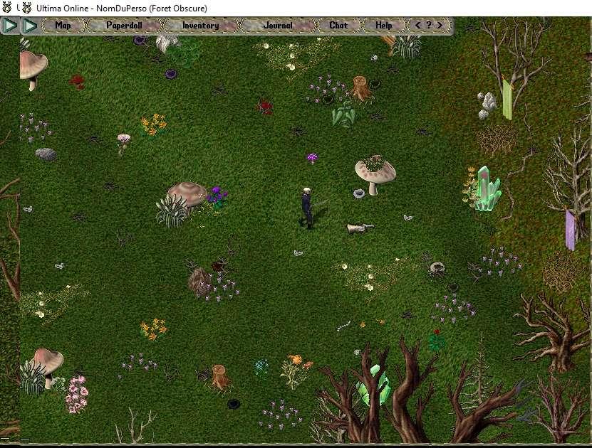 [Premiers pas sur Ultima Online] Chapitre 3 Se déplacer, courir, parler, chuchoter, agir 001bas12