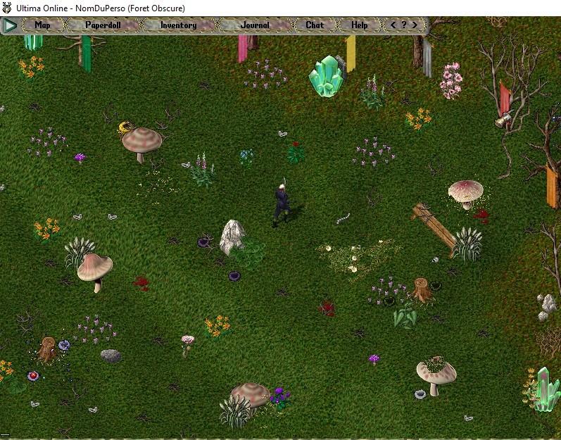 [Premiers pas sur Ultima Online] Chapitre 3 Se déplacer, courir, parler, chuchoter, agir 002bas10