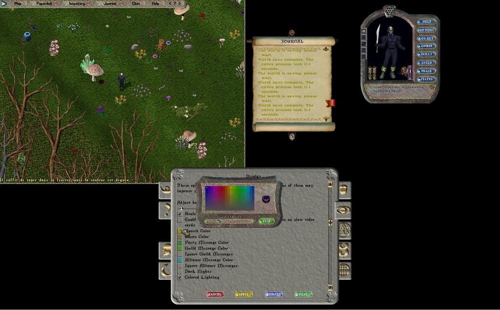 [Premiers pas sur Ultima Online] Chapitre 3 Se déplacer, courir, parler, chuchoter, agir 003bas10