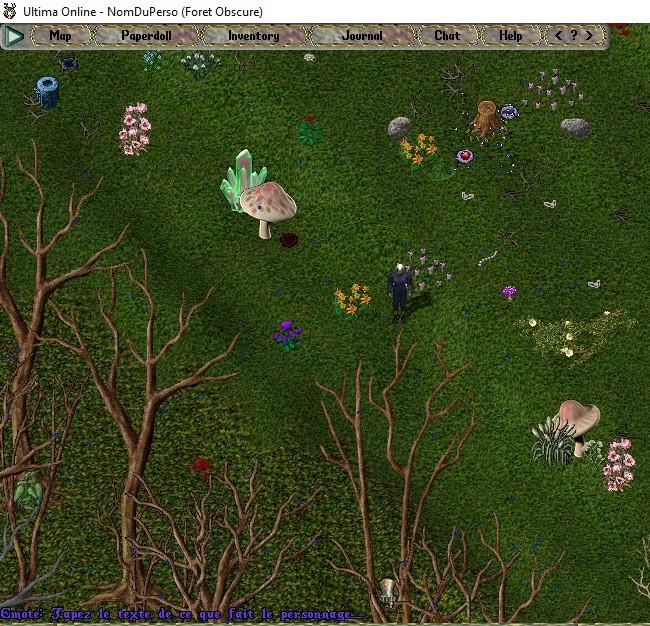 [Premiers pas sur Ultima Online] Chapitre 3 Se déplacer, courir, parler, chuchoter, agir 0061ba10