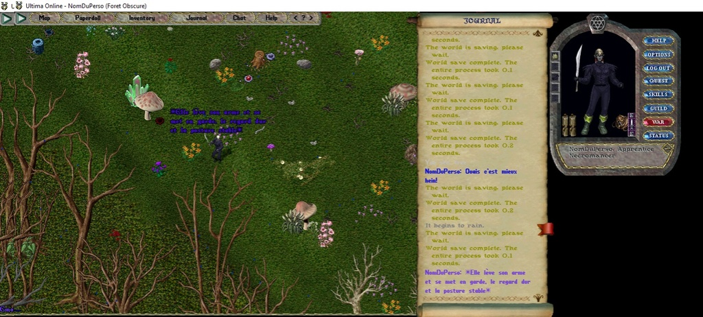 [Premiers pas sur Ultima Online] Chapitre 3 Se déplacer, courir, parler, chuchoter, agir 006bas10