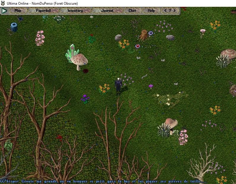[Premiers pas sur Ultima Online] Chapitre 3 Se déplacer, courir, parler, chuchoter, agir 007bas10