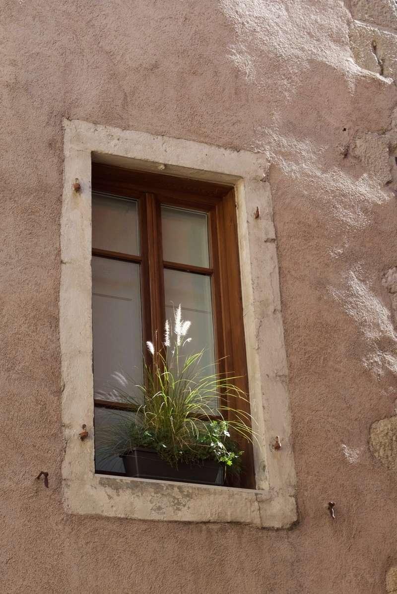 [Fil ouvert ] Fenêtres, volets, ouvertures... - Page 6 P1040210