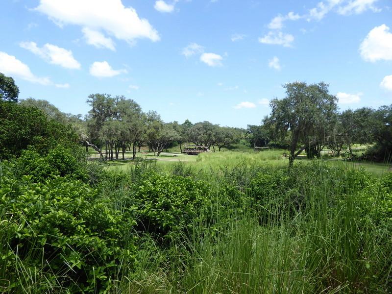 [TR vidéo] ♫ For the first time in Florida ♪ : périple floridien en août 2017 - Page 13 P1020415