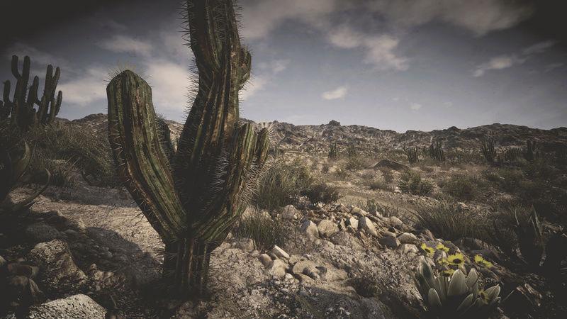 The Wild West Screenshot Contest Tom_cl11