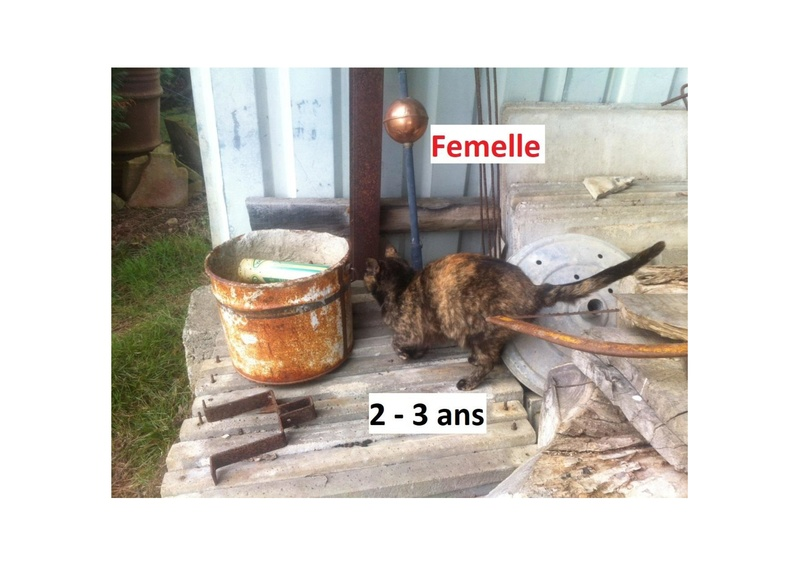 CRAPOUILLE et HUBBEL Photos24