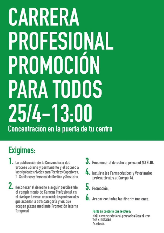 COMIENZAN LAS MOVILIZACIONES POR LA CARRERA PROFESIONAL PARA TODOS Cartel12