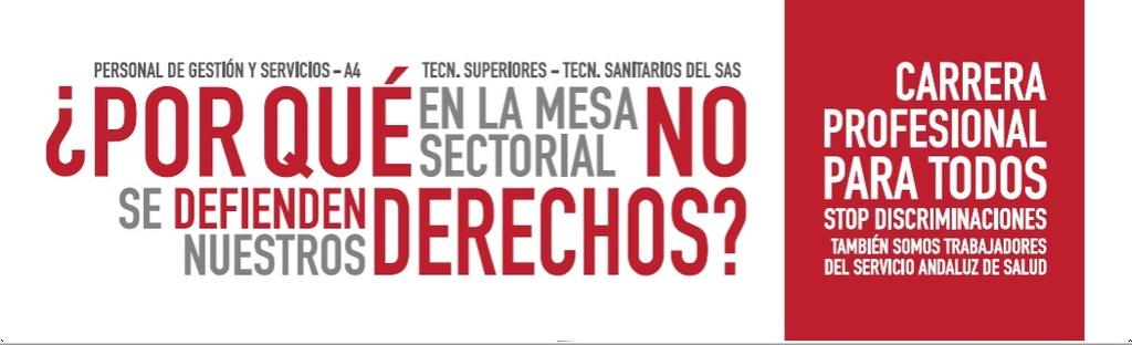 COMIENZAN LAS MOVILIZACIONES POR LA CARRERA PROFESIONAL PARA TODOS Pancar10