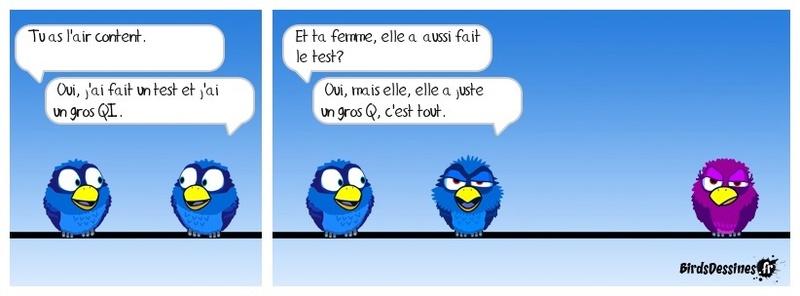 Votre humour de zèbre - Page 4 Birds_10
