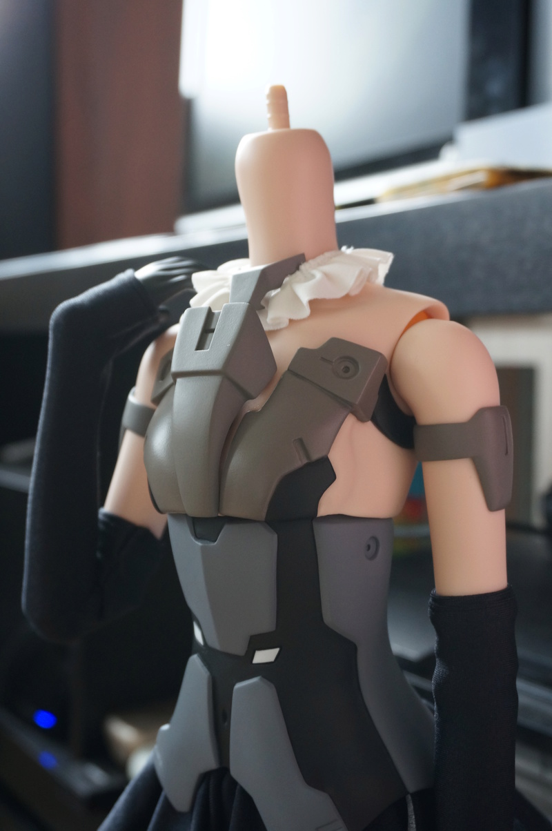 [Smart Doll] Frame Arms Girl - Gourai - Page 3 Dsc09628