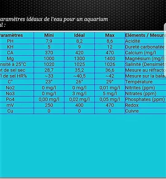 présntation de mon nano marinus dennerle 60L. 27336111