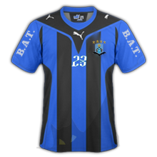 Blue Army Team Bat_aw10