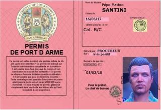 Déclarations de permis de port d'arme  Port_d11