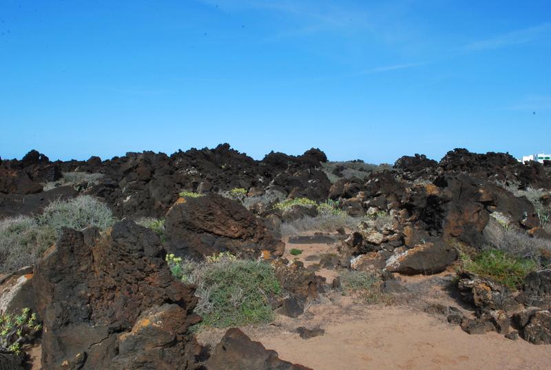 Canaries Fuerteventura / Lanzarotte Dsc_3910