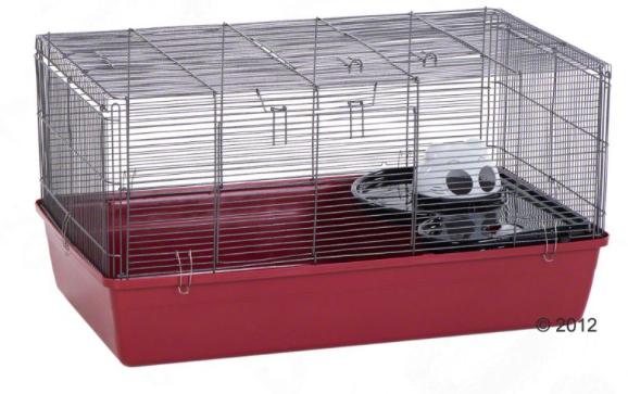Cage de convalescence / quarantaine Captur10