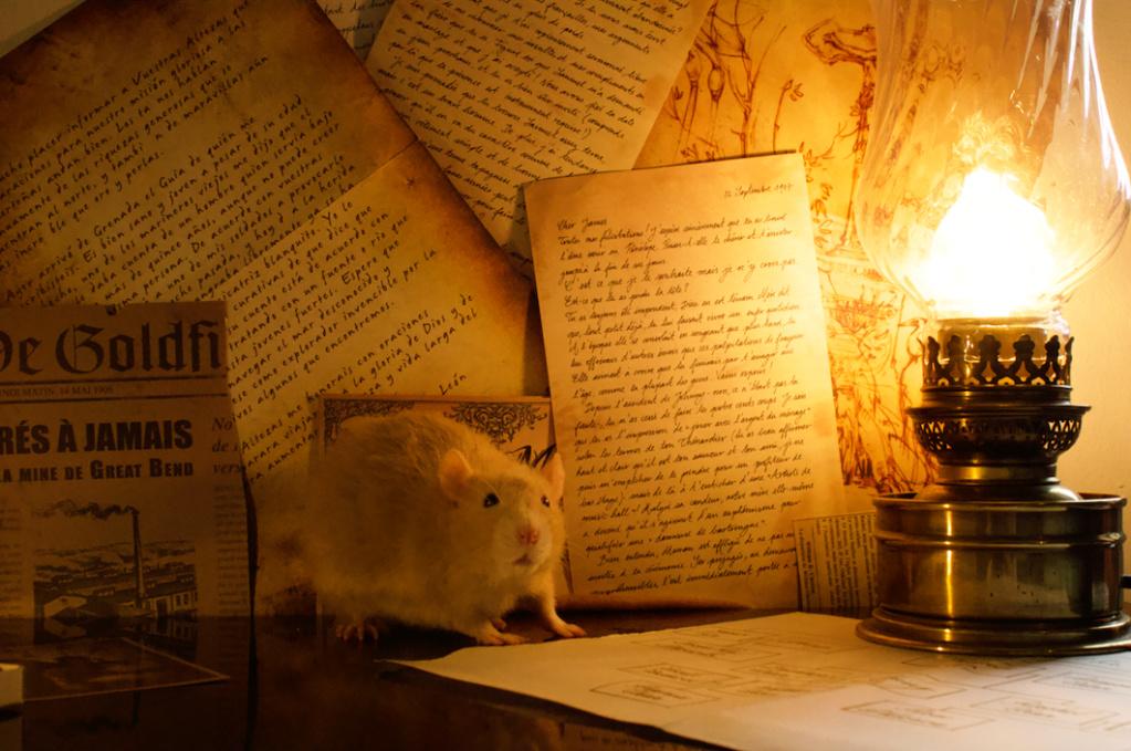Les 3 p'tits rats - Page 17 Captur36