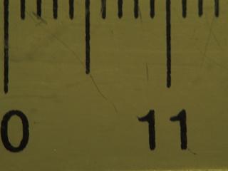 stab et macro avec bague sans contacts P5230411