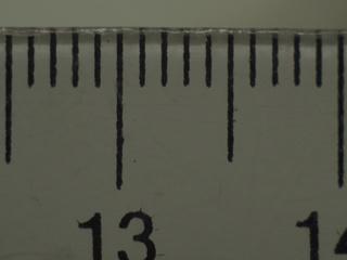 stab et macro avec bague sans contacts P5240410