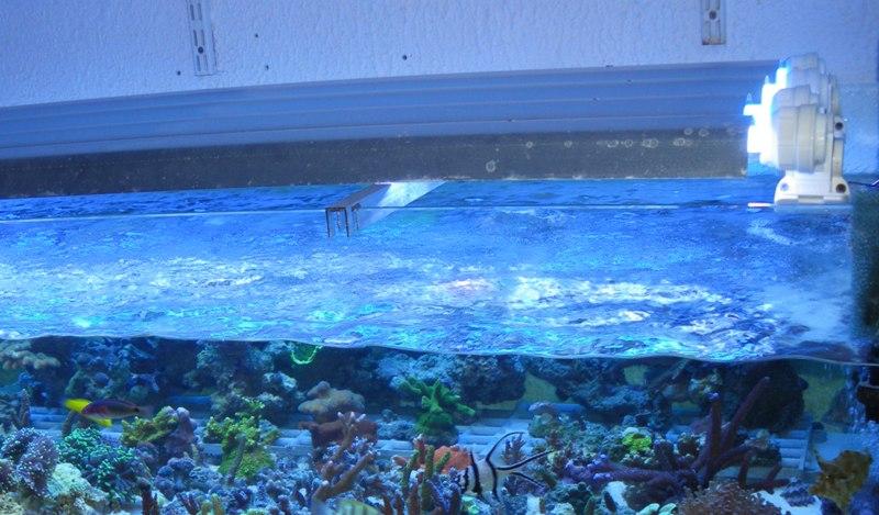 arrêt aquariophilie marine je vends Cliktr11