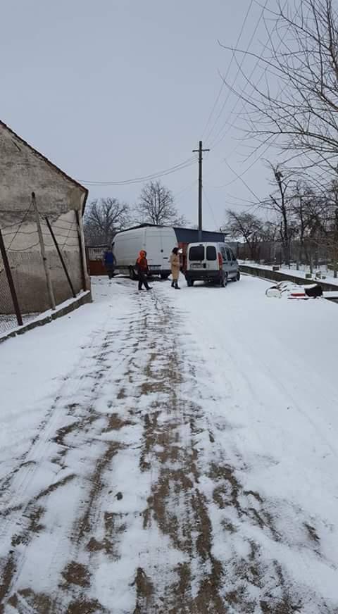 Arrivée du 3 mars 2018 par camion (Roumanie) - Page 4 Fb_i4920