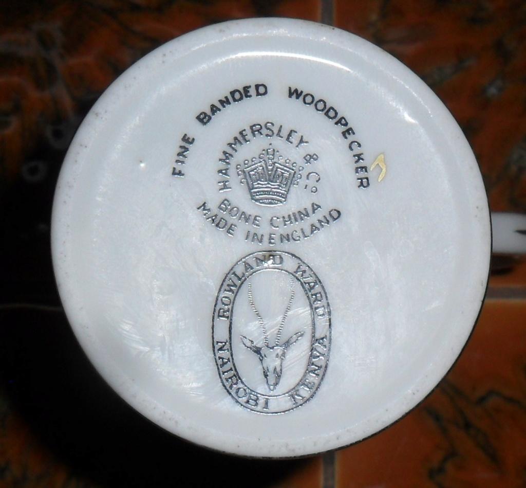 Rowland Ward Kenya / Hammersley and Co Sam_8523