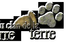▶ Histoire d'Elémenloup & chronologie 14650613