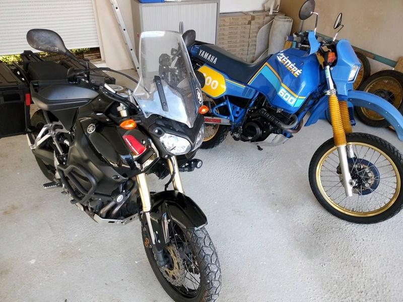 TENERE 600 XTZ 1 VJ 86 petit comencement Bb4a9110