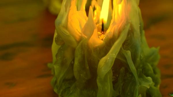 Русалкины свечи. 311