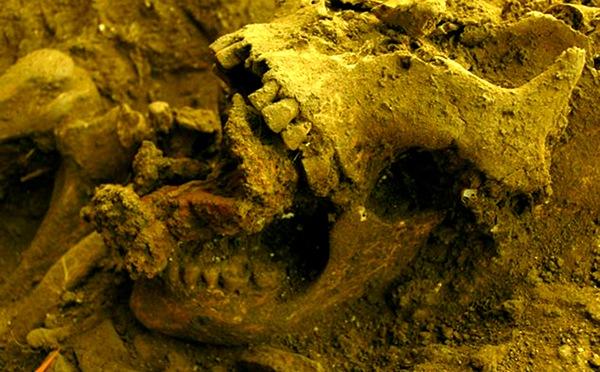 В Италии нашли останки ведьмы, прибитые гвоздями к земле. 319