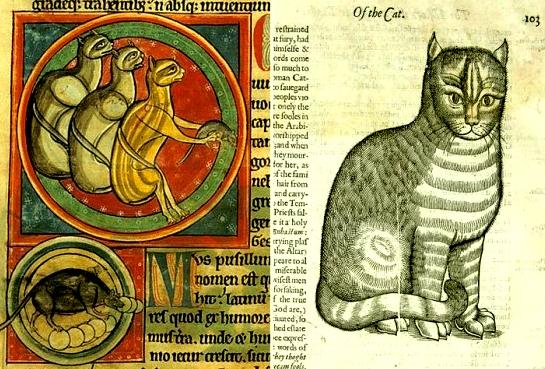 Кошка в средневековой христианской демонологии. 414