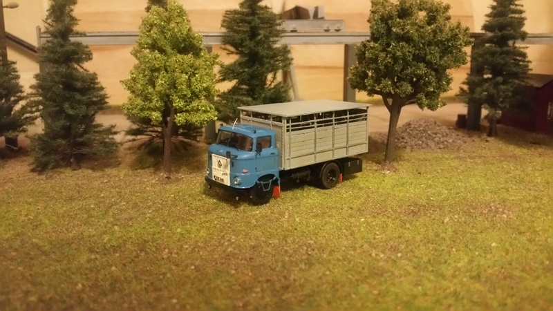 W50 Viehtransporter 20180319