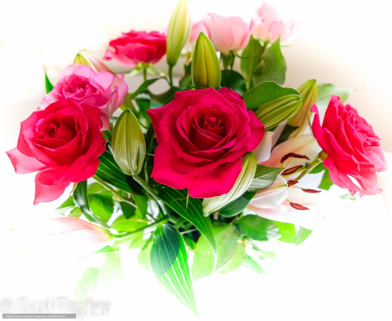 Cveće - Page 22 65852710