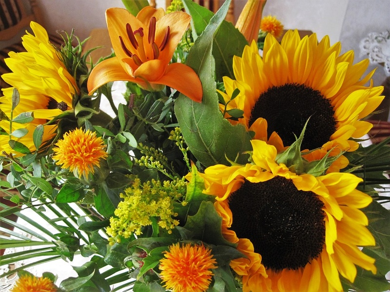 Suncokreti-sunflowers - Page 28 Autumn25