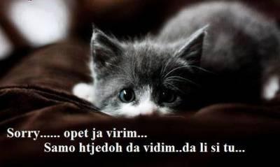 Dobro jutro , dobra večer , laku noć  :) - Page 26 Ef036210