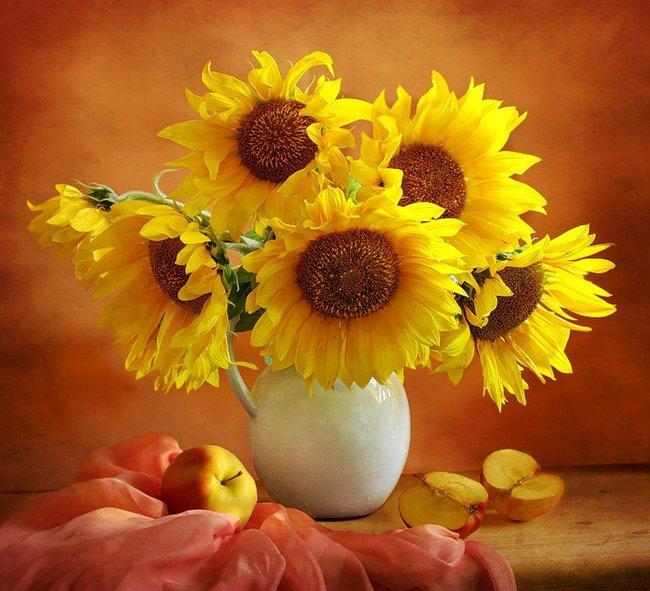 Suncokreti-sunflowers - Page 27 Egb82r10