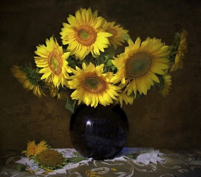 Suncokreti-sunflowers - Page 27 Ehnk7v10