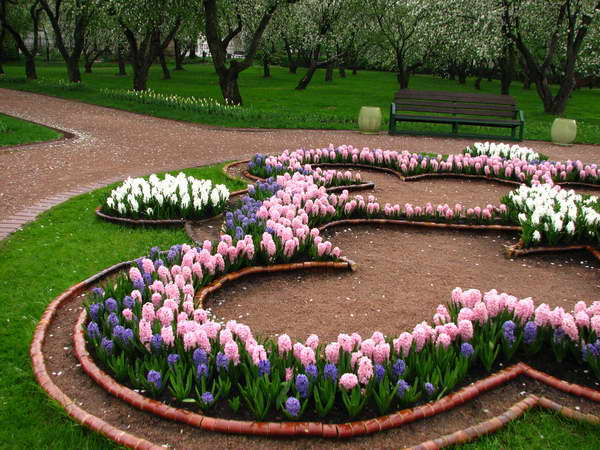 Parkovi i vrtovi - Page 33 Flower28