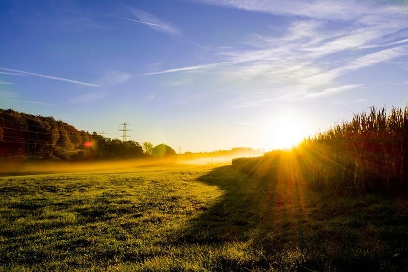 Sunce izlasci i zalasci - Page 2 Meadow10