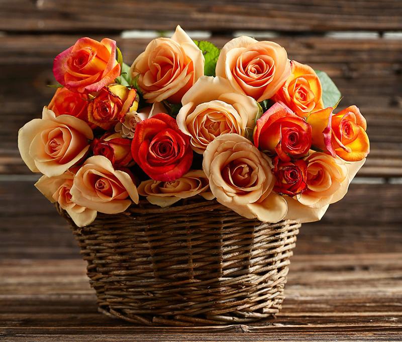 Cveće - Page 22 Roses_18