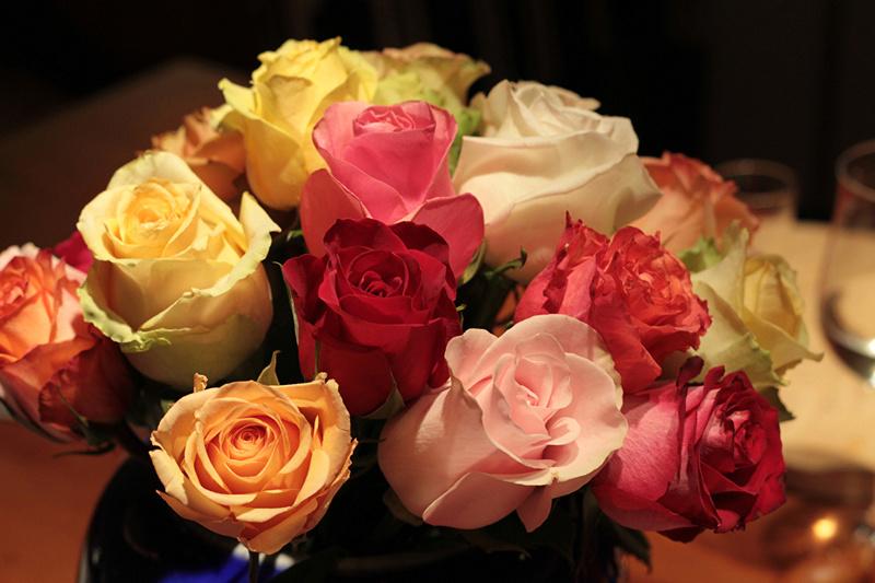 Cveće - Page 22 Roses_21