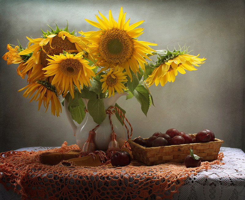 Suncokreti-sunflowers - Page 27 Still-17
