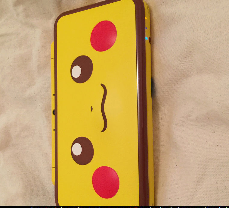 Nintendo 3DS [LE TOPIK OFFICIEL] Pika110
