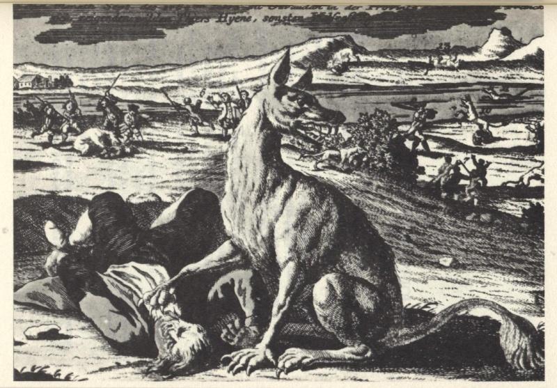 La bête du Gévaudan 1125