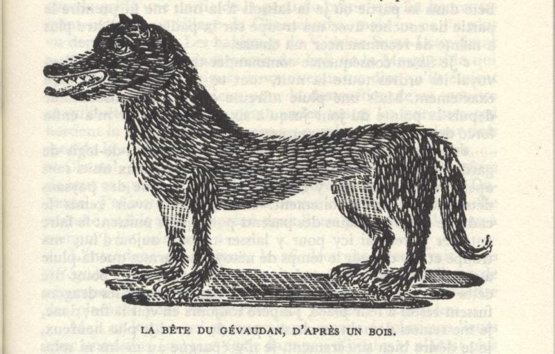 La bête du Gévaudan 428