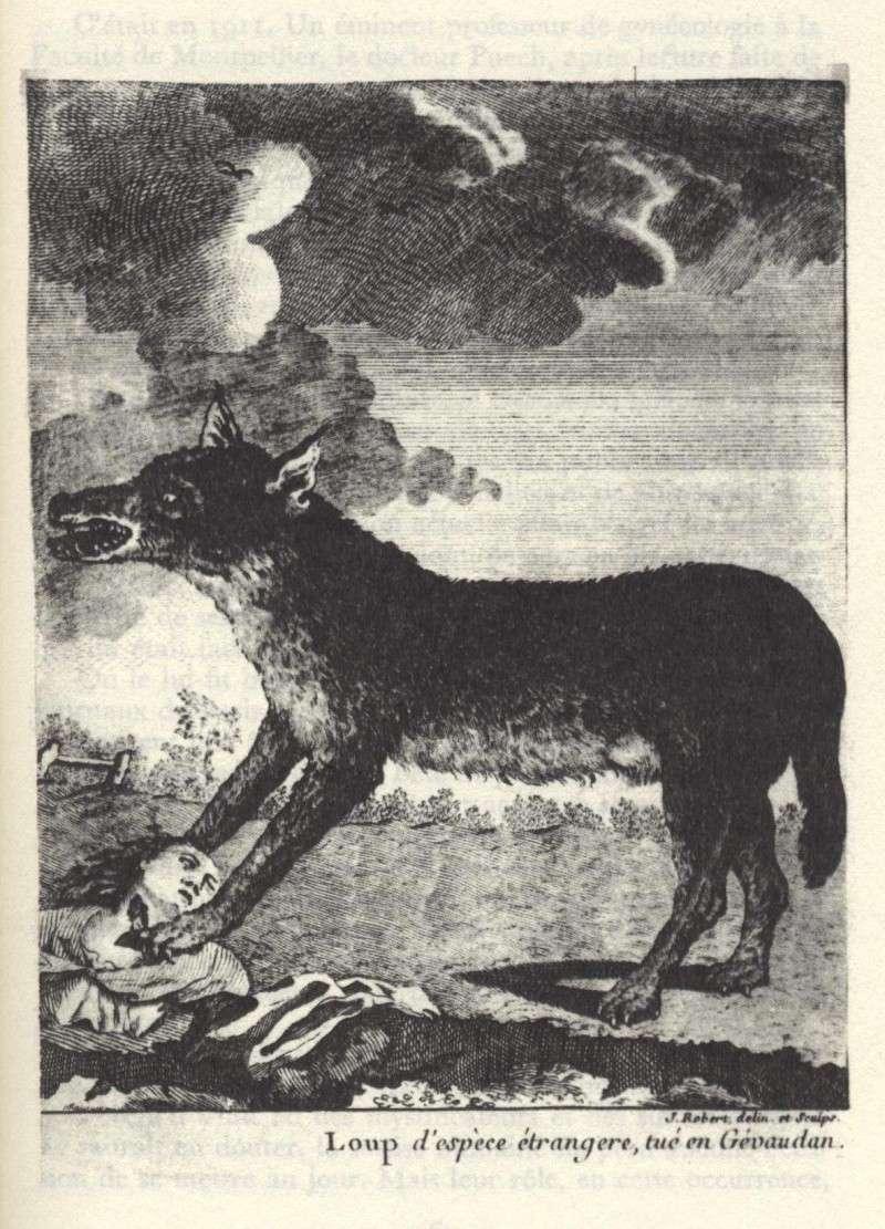 La bête du Gévaudan 432