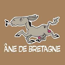 Ils ont volé le coeur  d'Anne de Bretagne ! 590