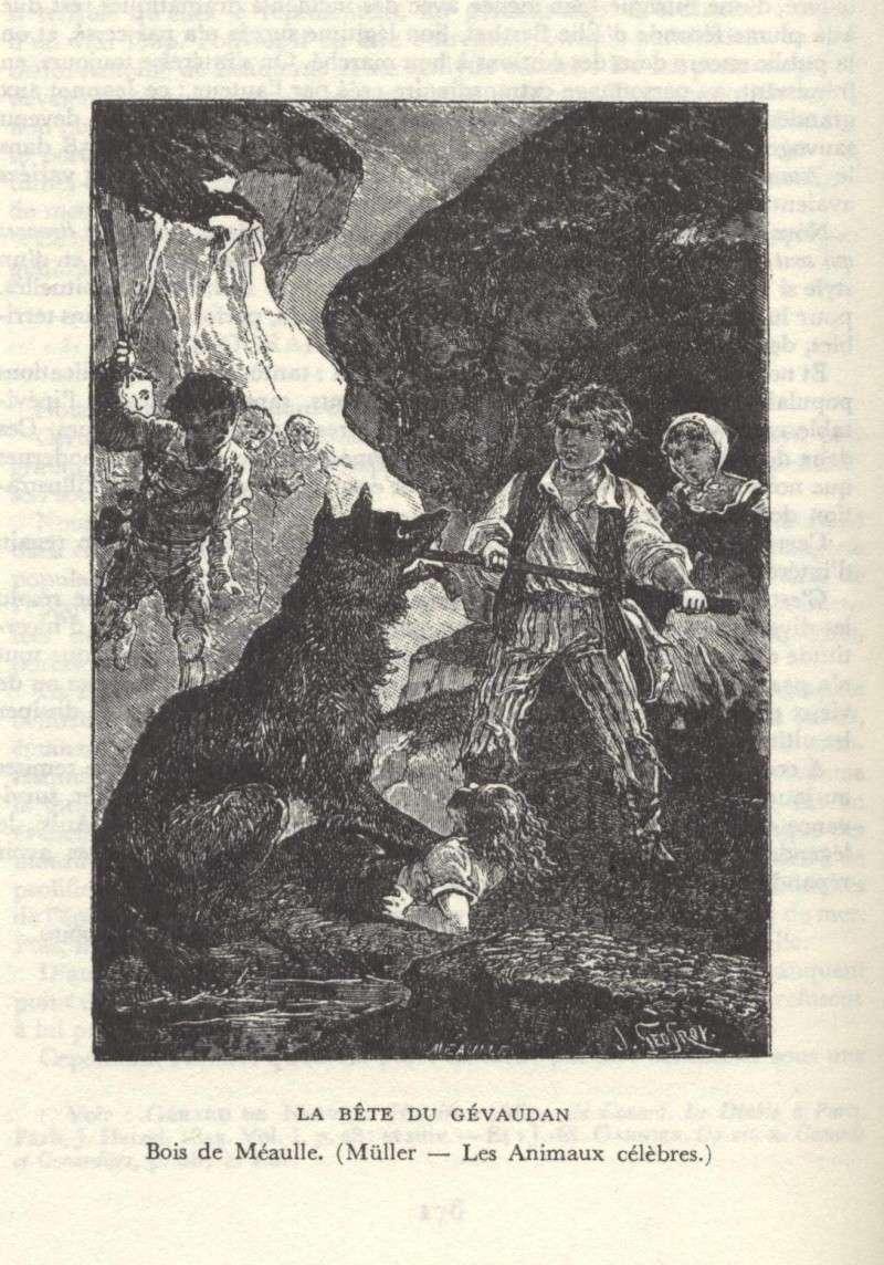La bête du Gévaudan 613